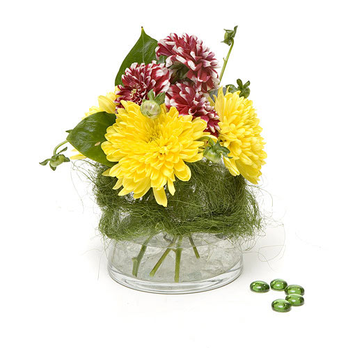 Daybreak - Design Fresh Cut Flowers