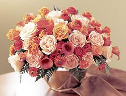 Apprehensio Arrangement - Design Fresh Cut Flowers