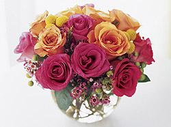 Come With Me Arrangement - Design Fresh Cut Flowers