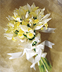 Tender Bouquet - - Events Flower Arrangements